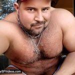 Bear BF Videos Sale