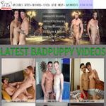 sex Bad Puppy